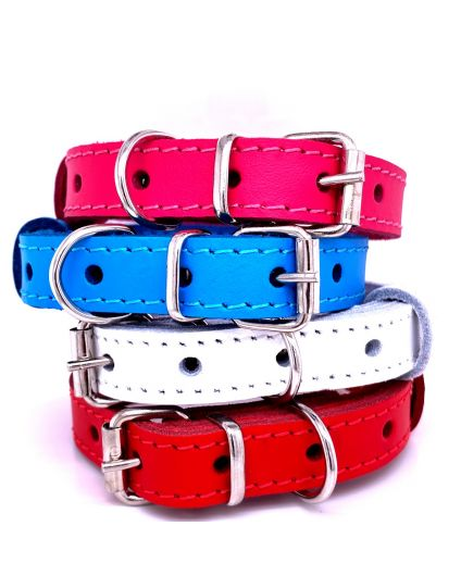 Leather Dog Collar - Red